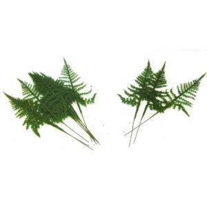 Premium Artificial Ivy Fern Fake Foliage Leaf Leaves Corsage Buttonhole